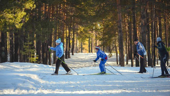 Langlauf Schnee Winter Sport