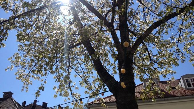 Frühling München