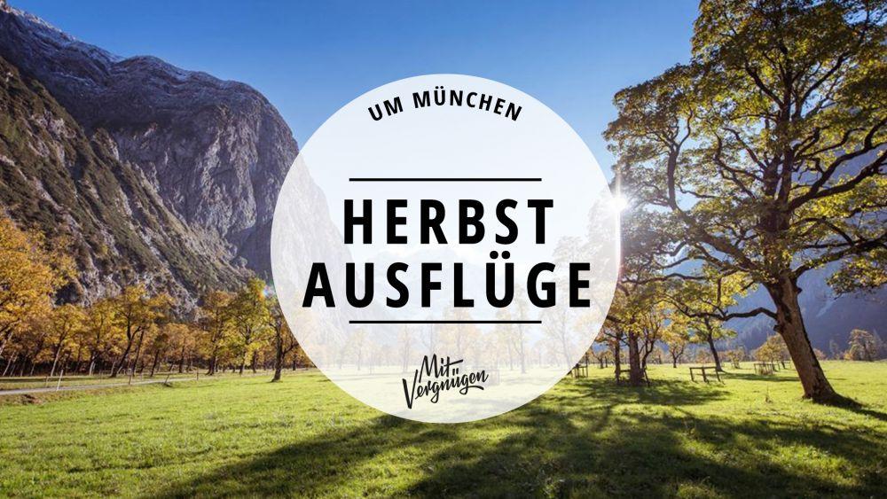 11 tolle Herbst-Ausflüge rund um München