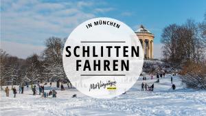 Rodeln Schlitten Winter