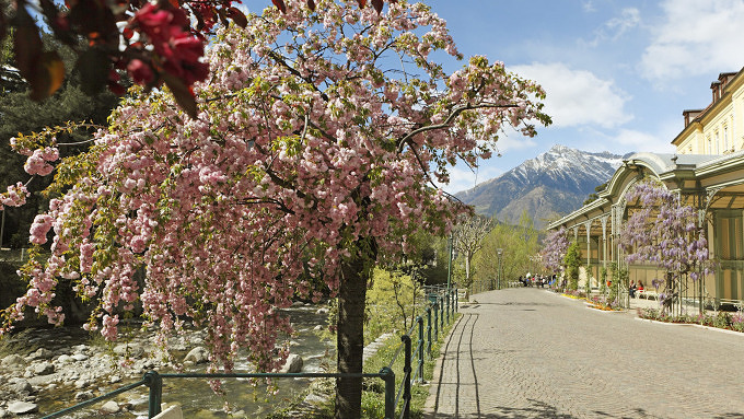 Meraner Frühling