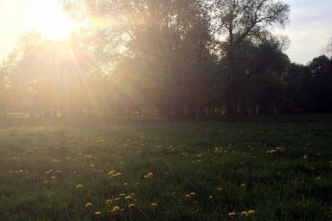 Nordteil Englischer Garten