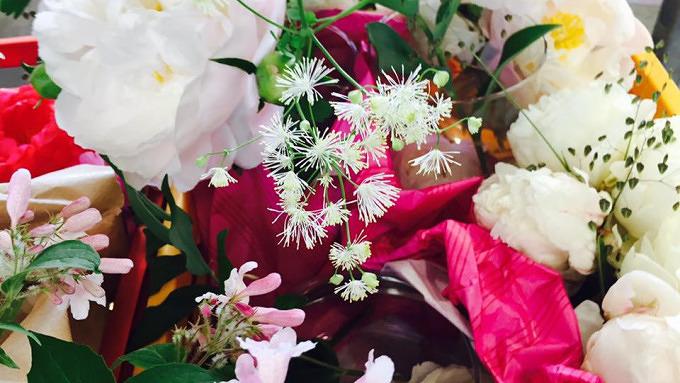 Blumen die Leben