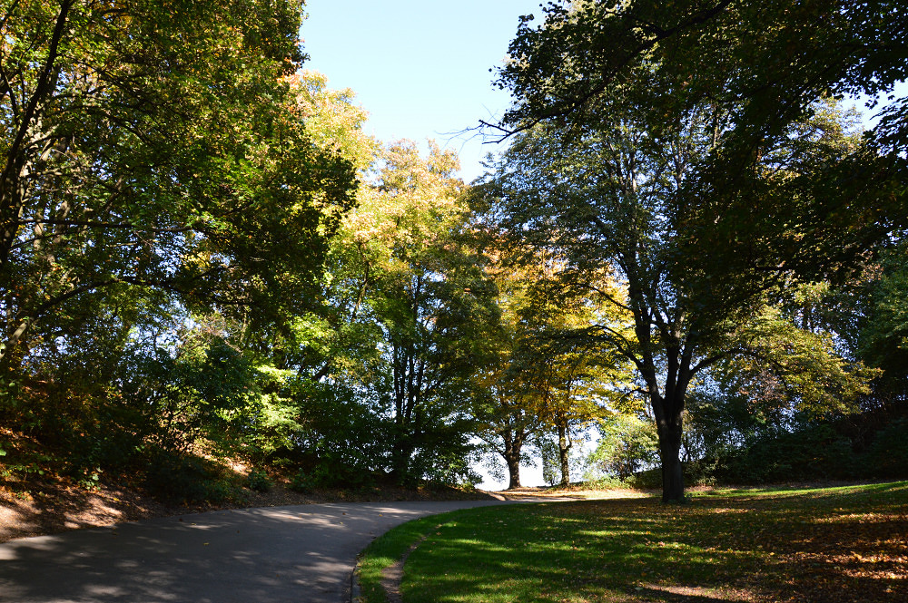 Luitpoldpark Mein Lieblingsort