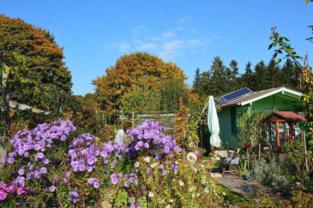 Luitpoldpark Mein Lieblingsort Kleingartenanlage