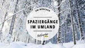 11 schöne Spaziergänge, die du im Münchner Umland machen kannst