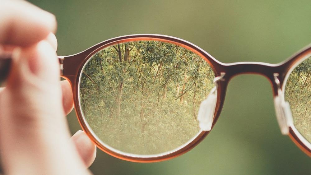Brille, Glasses