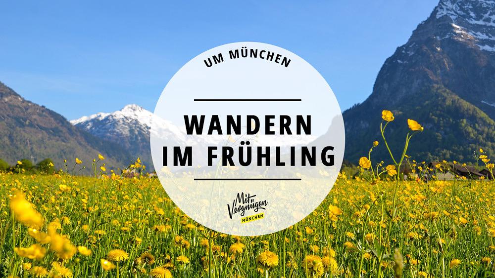 Wanderungen Frühling Alpen Bayern Hausberge