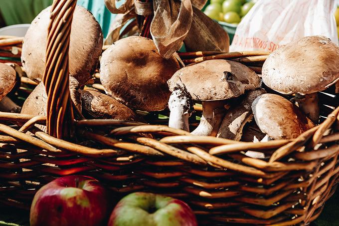 Foodsharing Initiative klimafreundlich