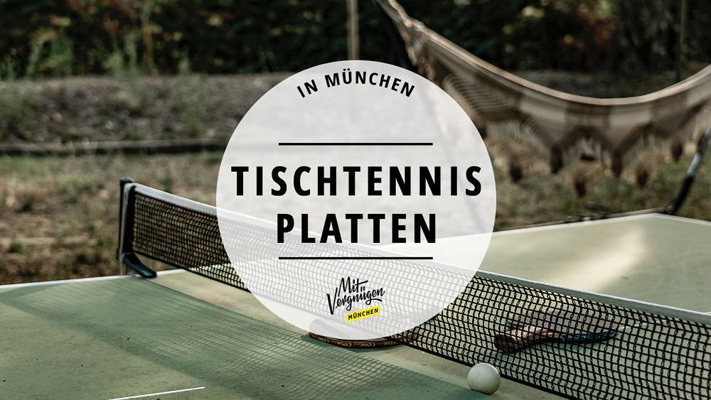 Tischtennisplatten Tischtennis