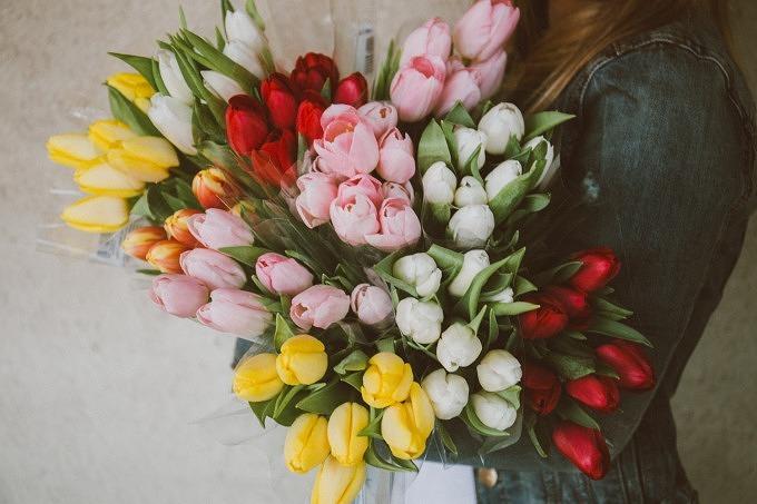 Blumen Tulpen Blumenstrauß