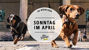 Sonntag im April